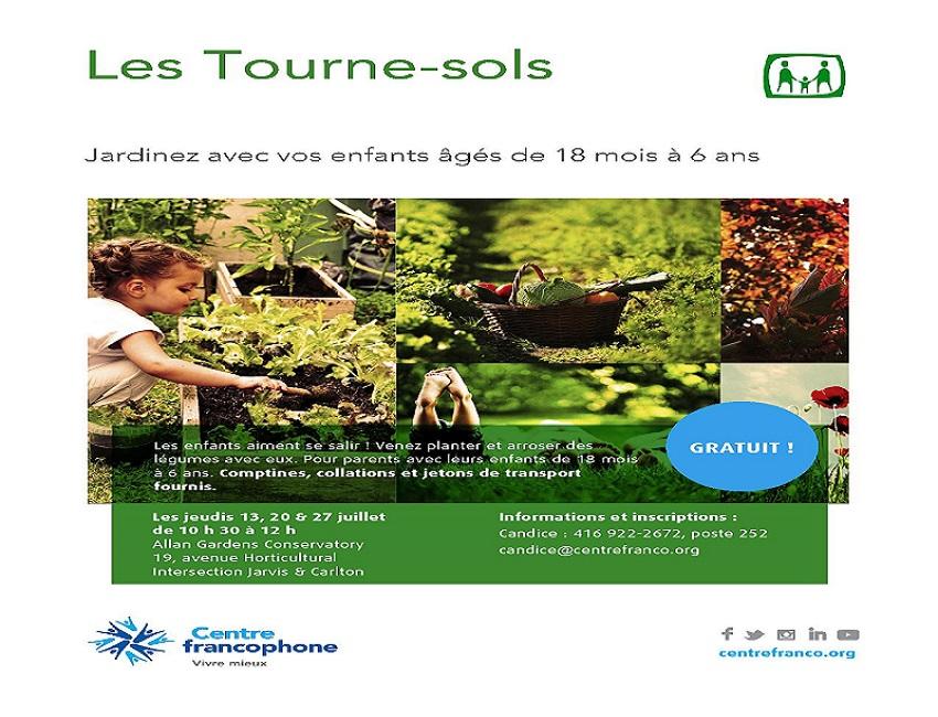Tourne-sols_juillet_2017
