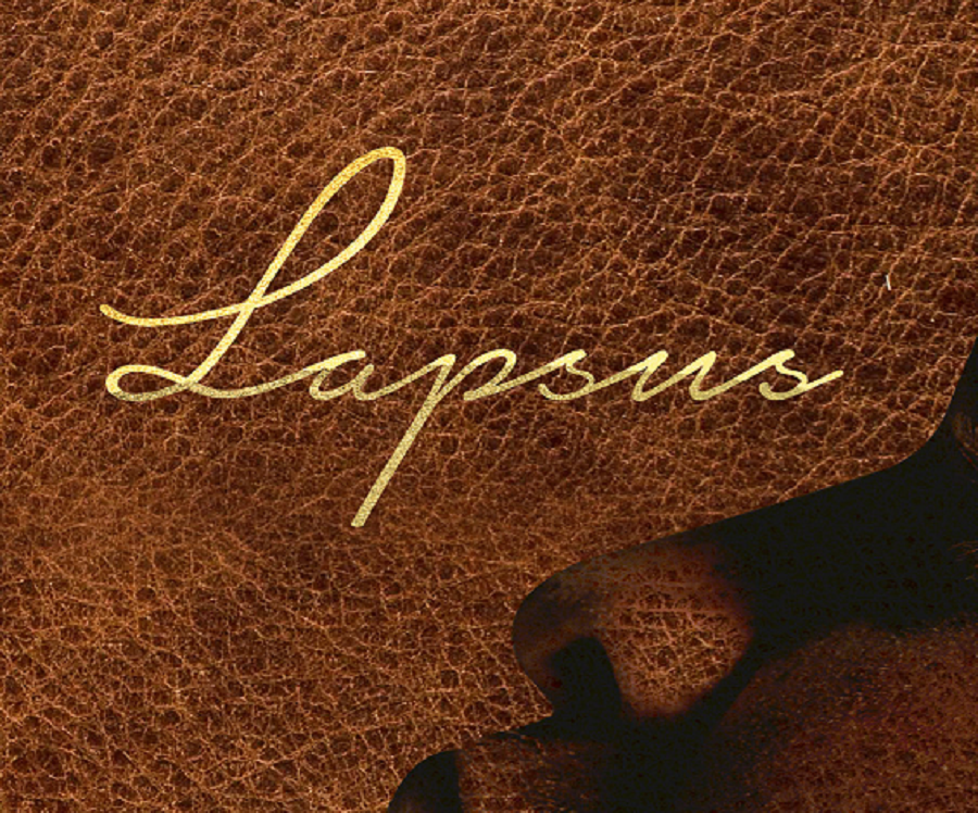 lapsus-picture
